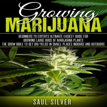 Marijuana : Growing Marijuana: Beginners To Experts Ultimate Easiest Guide For Growing Large Buds Of Marijuana Plants.The Grow Bible To Get Big Yields In Small Places Indoors And Outdoors, Saul Silver