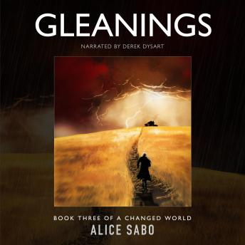 Gleanings, Alice Sabo