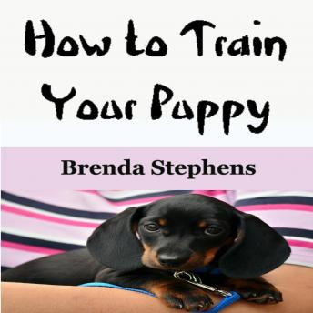 How to Train Your Puppy, Brenda Stephens