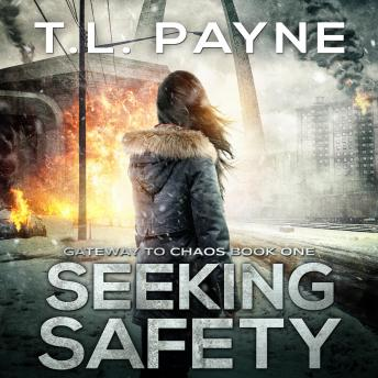 Seeking Safety: A Post-Apocalyptic EMP Survival Thriller