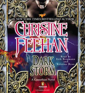 Download Dark Storm by Christine Feehan