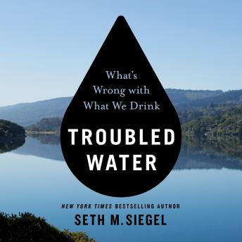 Download Troubled Water: What's Wrong With What We Drink by Seth M. Siegel