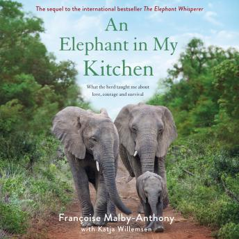 Download Elephant in My Kitchen: What the Herd Taught Me About Love, Courage and Survival by Françoise Malby-Anthony, Katja Willemsen