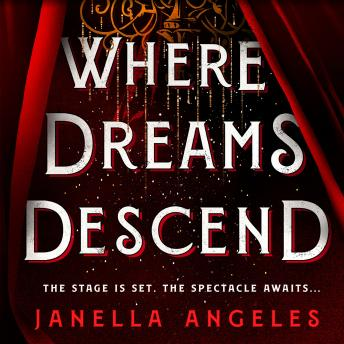 Where Dreams Descend: A Novel
