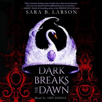 Dark Breaks the Dawn, Sara B. Larson