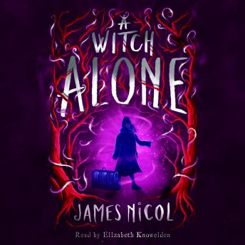 The Apprentice Witch Book 2: A Witch Alone