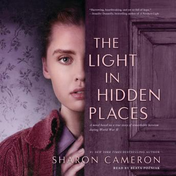 Download Light in Hidden Places by Sharon Cameron