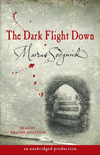 The Dark Flight Down