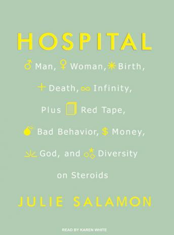 Download Hospital: Man, Woman, Birth, Death, Infinity, Plus Red Tape, Bad Behavior, Money, God, and Diversity on Steroids by Julie Salamon
