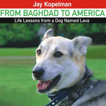 From Baghdad to America: Life Lessons from a Dog Named Lava, Jay Kopelman
