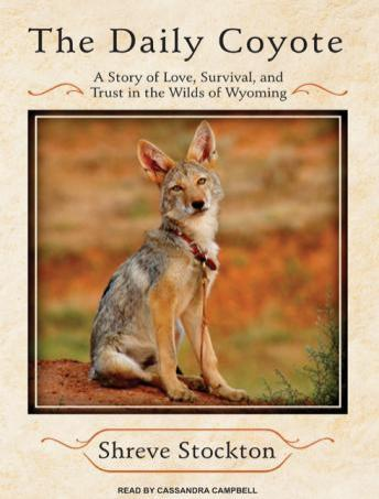 Daily Coyote: A Story of Love, Survival, and Trust in the Wilds of Wyoming, Shreve Stockton