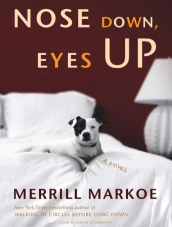 Nose Down, Eyes Up, Merrill Markoe