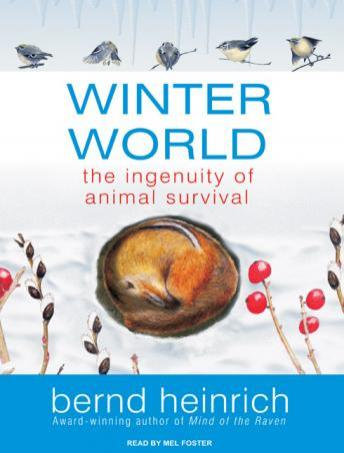 Winter World: The Ingenuity of Animal Survival, Bernd Heinrich