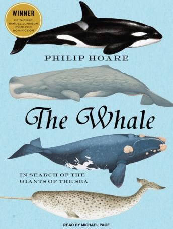 Whale: In Search of the Giants of the Sea, Philip Hoare