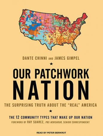 Our Patchwork Nation: The Surprising Truth about the 'Real' America, James Gimpel, Dante Chinni