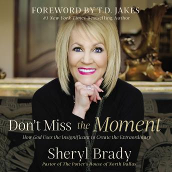 Don't Miss the Moment: How God Uses the Insignificant to Create the Extraordinary, Sheryl Brady
