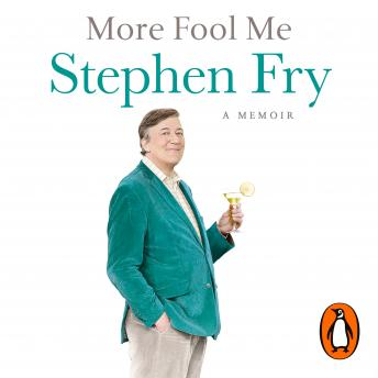 More Fool Me, Stephen Fry