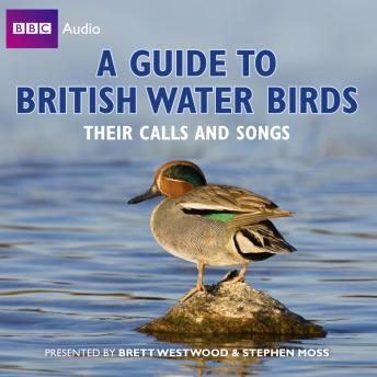 Guide to British Water Birds: Their Calls and Songs, Brett Westwood, Stephen Moss