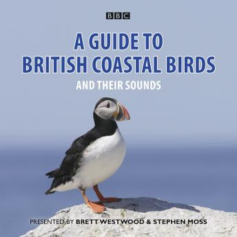 A Guide To British Coastal Birds: And Their Sounds