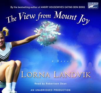 View from Mount Joy, Lorna Landvik