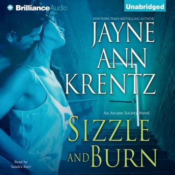 Sizzle and Burn, Audio book by Jayne Ann Krentz