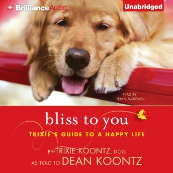 Bliss to You, Dean Koontz