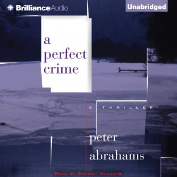 Perfect Crime, Peter Abrahams