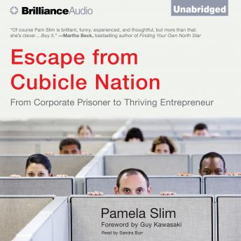 Escape from Cubicle Nation, Pamela Slim