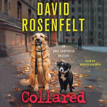 Collared: An Andy Carpenter Mystery