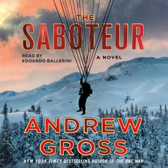 The Saboteur: A Novel