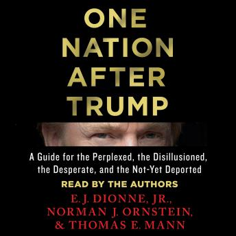 Download One Nation After Trump: A Guide for the Perplexed, the Disillusioned, the Desperate, and the Not-Yet Deported by Thomas E. Mann, Norman J. Ornstein, Jr. E.J. Dionne