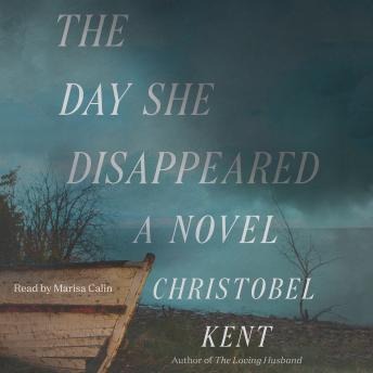 The Day She Disappeared: A Novel