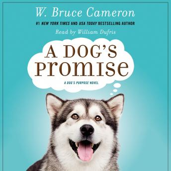 A Dog's Promise: A Novel