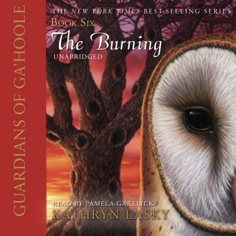 Guardians of Ga'Hoole, Book Six: The Burning, Kathryn Lasky