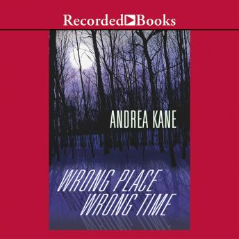 Wrong Place, Wrong Time, Andrea Kane