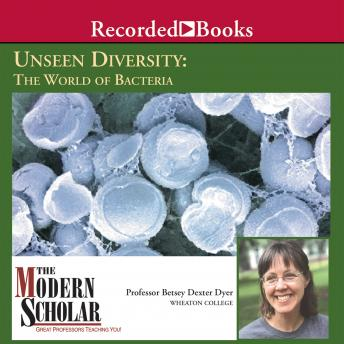 Download Unseen Diversity: Bacterial World by Betsey Dexter Dyer