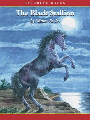 Download Black Stallion by Walter Farley
