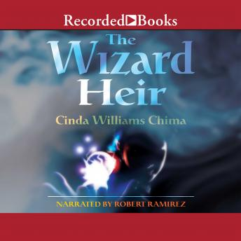 Wizard Heir, Cinda Williams Chima