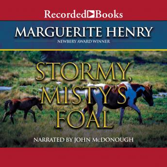 misty of chincoteague audiobook
