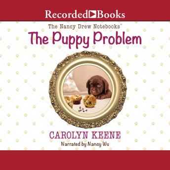 Puppy Problem, Carolyn Keene