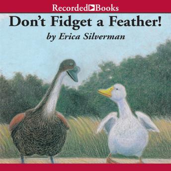 Don't Fidget a Feather, Erica Silverman
