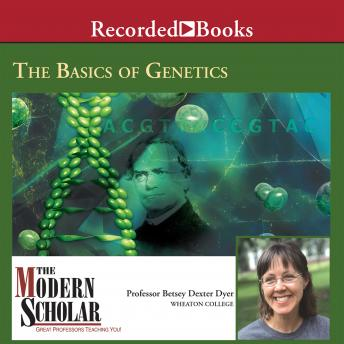 Download Basics of Genetics by Betsy Dyer