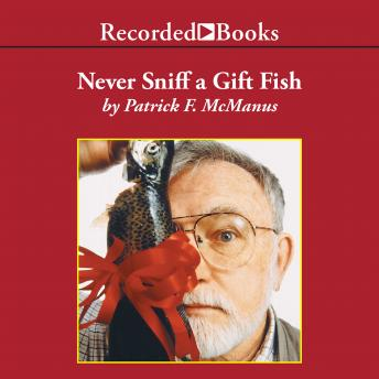 Never Sniff a Gift Fish