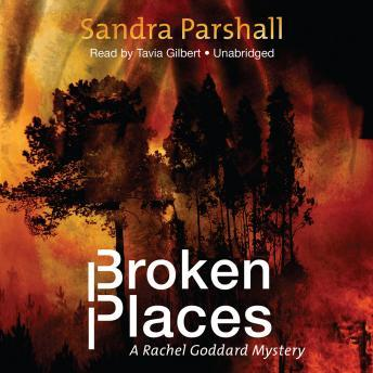 Broken Places, Sandra Parshall