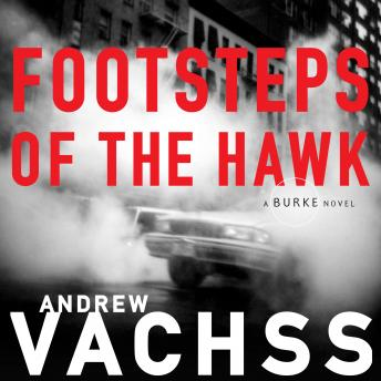 Footsteps of the Hawk, Andrew Vachss