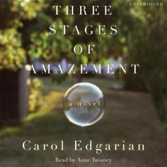 Three Stages of Amazement: A Novel, Carol Edgarian