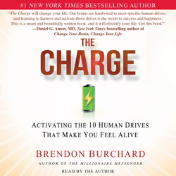 Charge: Activating the 10 Human Drives That Make You Feel Alive, Brendon Burchard