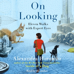 On Looking: Eleven Walks with Expert Eyes sample.