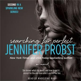 Searching for Perfect, Jennifer Probst