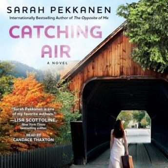 Catching Air: A Novel, Sarah Pekkanen